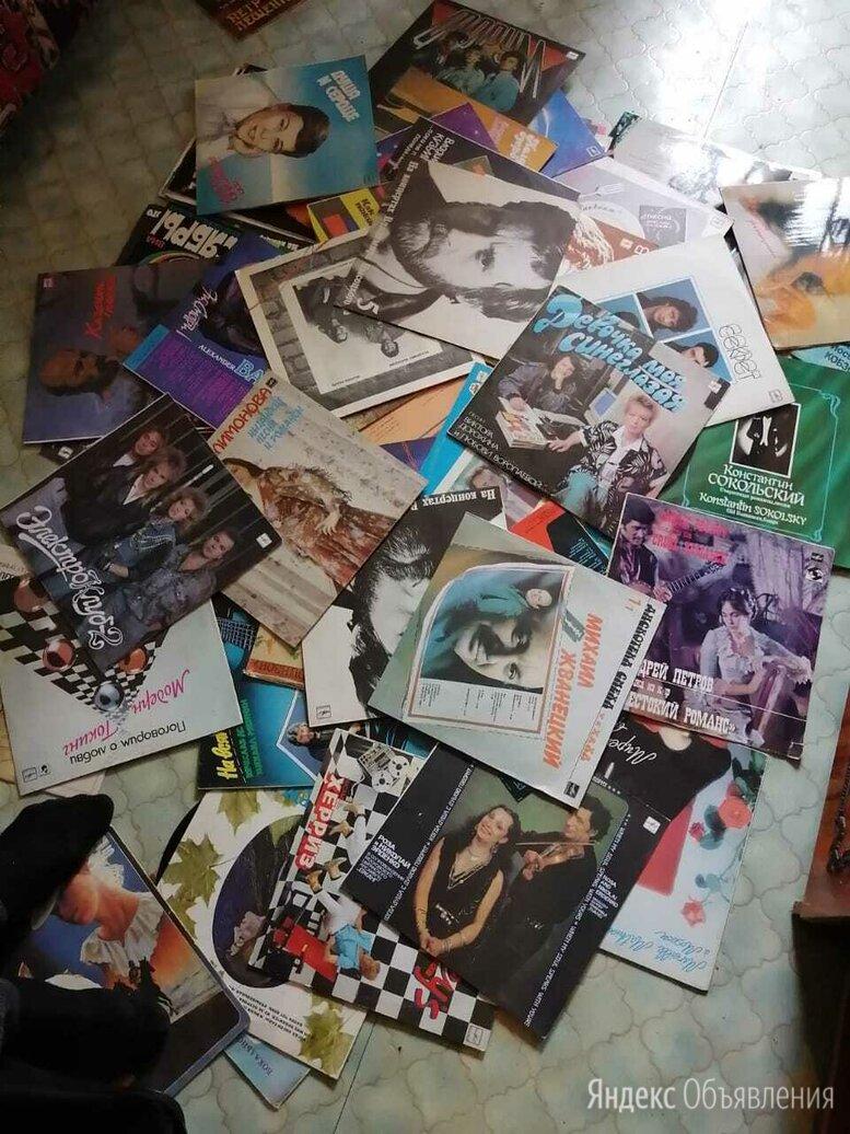 Виниловые пластинки  по цене 100₽ - Виниловые пластинки, фото 0