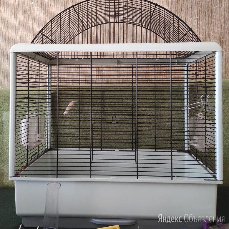 Клетка для попугаев Ferplast Palladio 4 с оборудованием по цене 4000₽ - Клетки и домики, фото 0