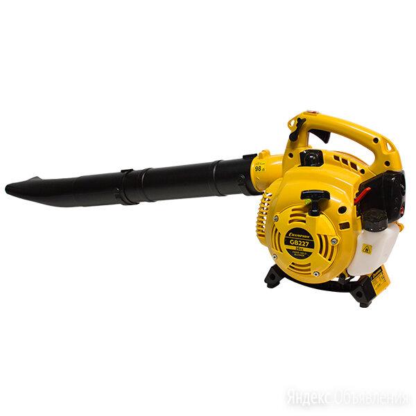 Воздуходувка Champion GB-227 по цене 9450₽ - Воздуходувки и садовые пылесосы, фото 0