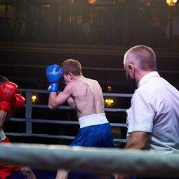 Спорт, красота и здоровье - Персональные тренировки по боксу , 0