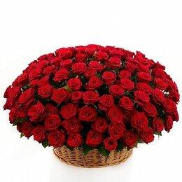 Цветы, букеты, композиции - Композиция в корзине «Вулкан любви» - XXL (80см), 0