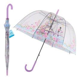 Зонты и трости - Зонт - Весна в Париже, 0