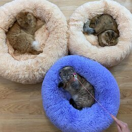 Лежаки, домики, спальные места - Лежаки для животных, 0