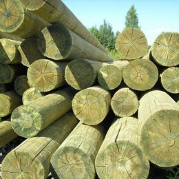 Железобетонные изделия - Опора деревянная пропитанная ЛЭП 9.5м (160-200), 0