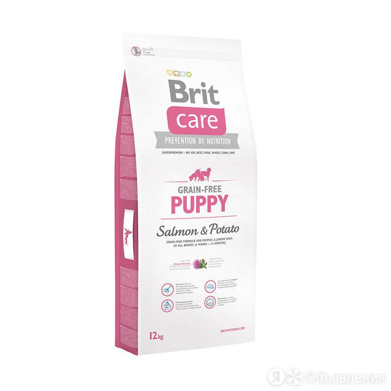 Brit Care Grain - free Puppy Salmon & Potato для щенков всех пород с лососем и к по цене 5900₽ - Корма , фото 0