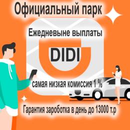 Бухгалтеры - Водитель DiDi на своём авто, 0