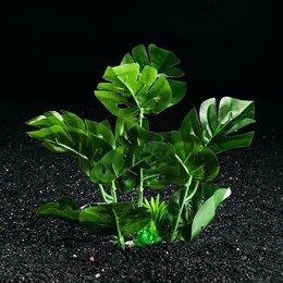 Растения для аквариумов и террариумов - Растение искусственное аквариумное, 28 х 24 х 22 см (комплект из 2 шт.), 0