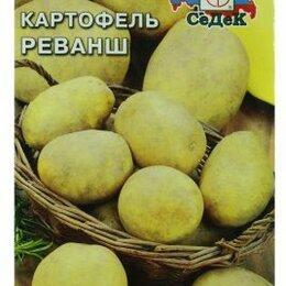 Лук-севок, семенной картофель, чеснок - Картофель Реванш (СеДеК), 0