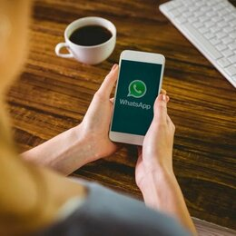 Менеджеры - Менеджер WhatsApp, 0