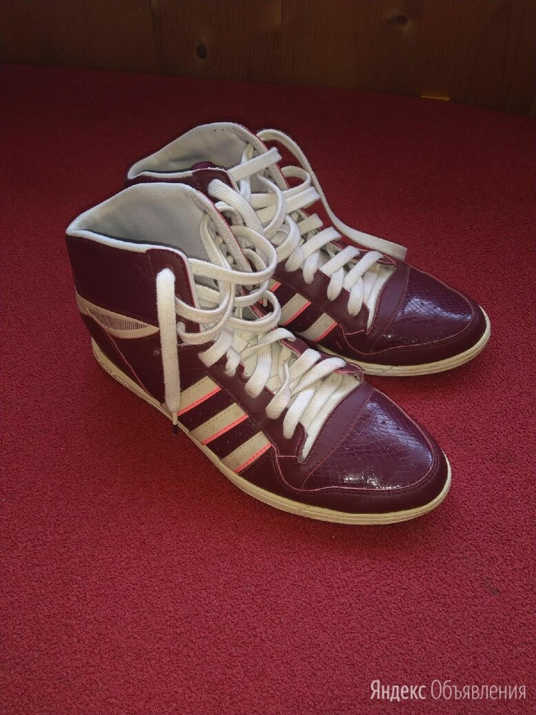 Кеды женские Adidas  по цене 900₽ - Кроссовки и кеды, фото 0