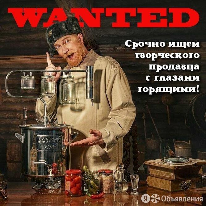 Продавец-консультант в магазин самогонных аппаратов и пивоварен - Консультанты, фото 0