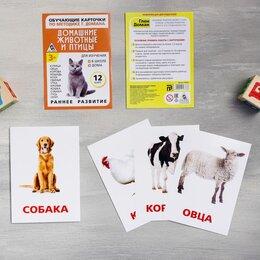 """Обучающие материалы и авторские методики - Обучающие карточки """"Домашние животные и птицы"""", 0"""