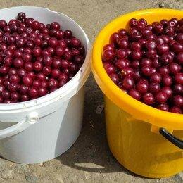 Продукты - Ведро вишни, 0