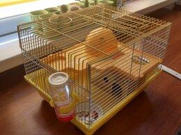 Клетки и домики  - Клетка для грызунов + набор, 0