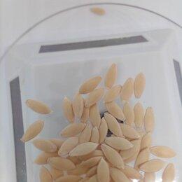 Семена - Семена огурцов, 0