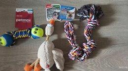 Корма  - Продам корм для собак, кошек, а также игрушки…, 0