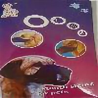 Намордники и недоуздки  - Нейлоновый намордник для собак крупных пород Mouth sleeve for pets 101541, 0
