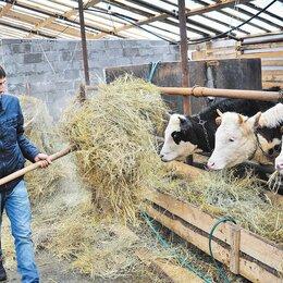 Садовники - Работник в частное фермерское хозяйство, 0