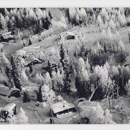 Открытки - Открытка СССР Русская зима 1966 Рюмкин чистая Зимой снежный лес сосна ель снег, 0