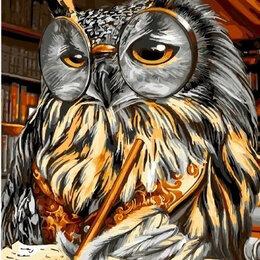 Раскраски и роспись - Картины по номерам Paintboy Ученый филин, 0