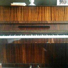 Клавишные инструменты - Пианино Nocturno, 0