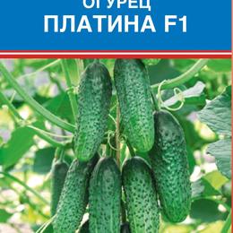 Семена - Виктория Огурец Платина F1, 0