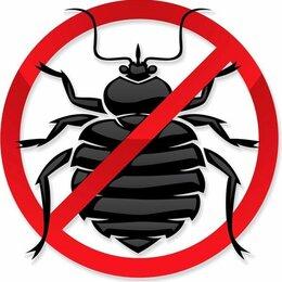 Бытовые услуги - Уничтожение насекомых, 0