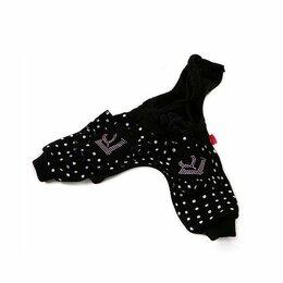 Одежда и обувь - штаны для собаки щенка, 0