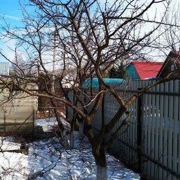 Бытовые услуги - Обрезка плодовых деревьев Обработка от вредителей, 0