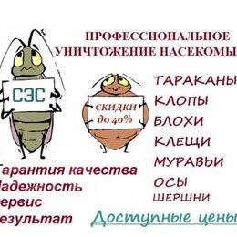 Бытовые услуги - Дезинсекция от насекомых, от вредителей, 0