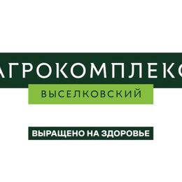 Продавцы и кассиры - Продавец-кассир (Кисловодск), 0