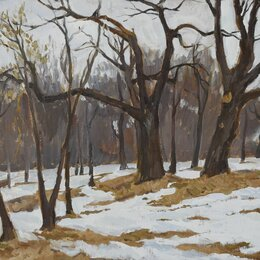 Картины, постеры, гобелены, панно - Пейзаж Оттепель в парке усадьбы Загряжских-Строгановых, 0