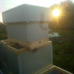Товары для сельскохозяйственных животных - Улей для пчел   на 6 рамок дадан теплый новый продам, 0