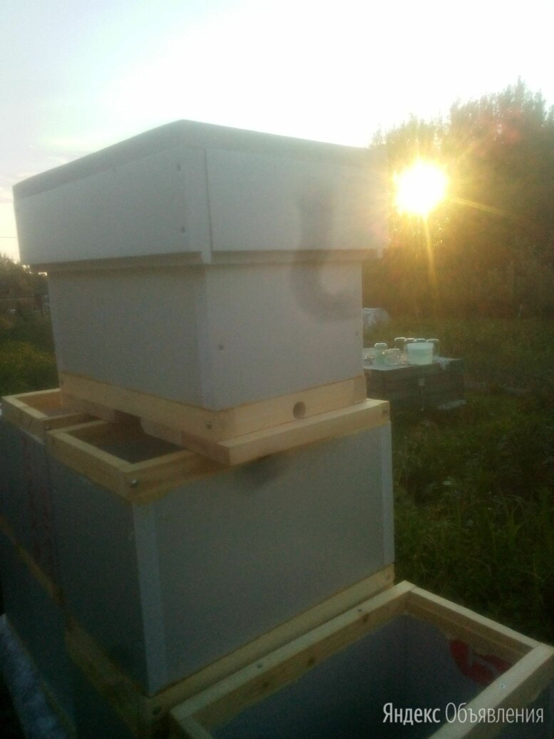 Улей для пчел   на 6 рамок дадан теплый новый продам по цене 1500₽ - Товары для сельскохозяйственных животных, фото 0