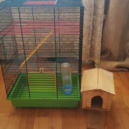 Клетки и домики  - Клетка для крысы, 0