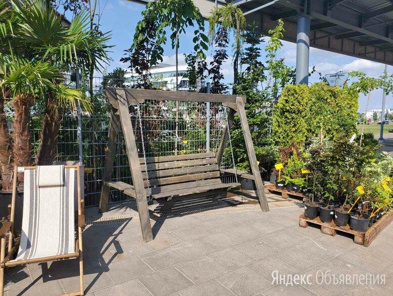 Садовые качели Мюнхен 1 по цене 18000₽ - Садовые качели, фото 0