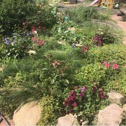 Бытовые услуги - Помощница по огороду, хозяйству, 0