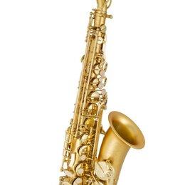 Саксофоны - D. Krenz AS-762 FG, 0