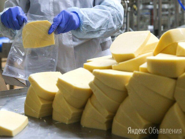 Упаковщик на производство сыра  - Упаковщики, фото 0