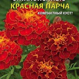 Рассада, саженцы, кустарники, деревья - Бархатцы отклоненные Красная парча ПЛ, 0