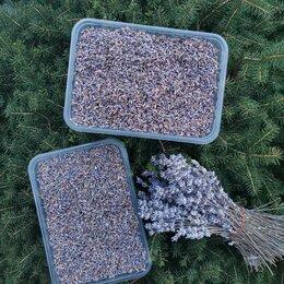 Семена - Лаванда горная ароматная. Соцветия , 0