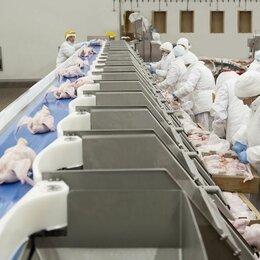 Операторы - Изготовитель полуфабрикатов из мяса птицы, 0