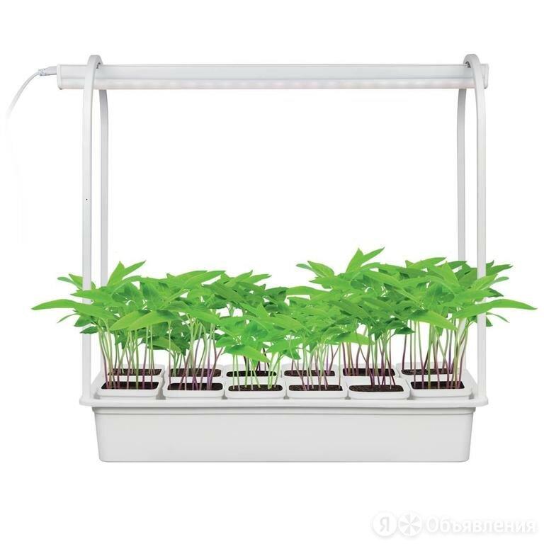 Светильник для растений Uniel Minigarden ULT-P34-10W/SPBR IP20 UL-00007471 по цене 1641₽ - Аксессуары и средства для ухода за растениями, фото 0