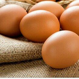 Продукты - Яйца куриные, 0
