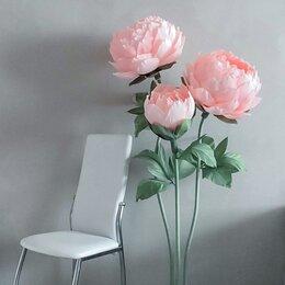 Цветы, букеты, композиции - Ростовые цветы пион изолон, 0