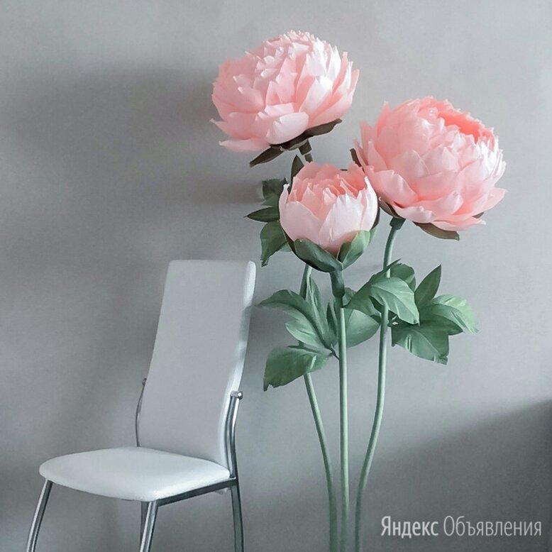 Ростовые цветы пион изолон по цене 6000₽ - Цветы, букеты, композиции, фото 0