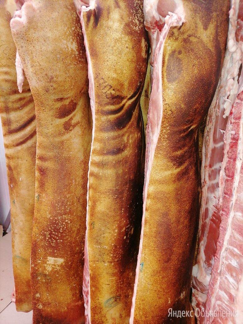 мясо свинина по цене 217₽ - Продукты, фото 0