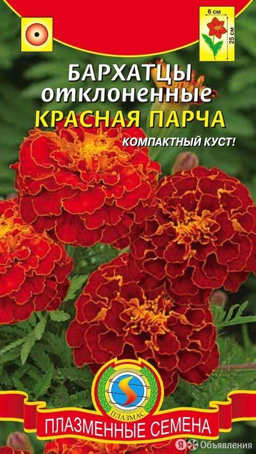 Бархатцы отклоненные Красная парча ПЛ по цене 21₽ - Семена, фото 0