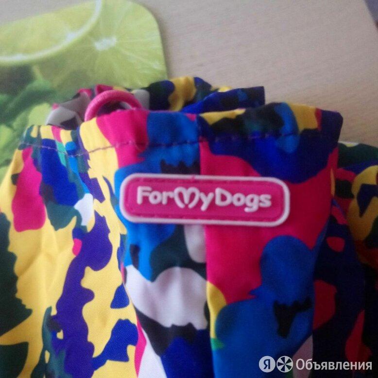 Одежда для маленьких собак  по цене 2000₽ - Одежда и обувь, фото 0