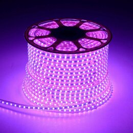 Наука и образование - LED лента 50 метров, цвет фиолетовый, 0